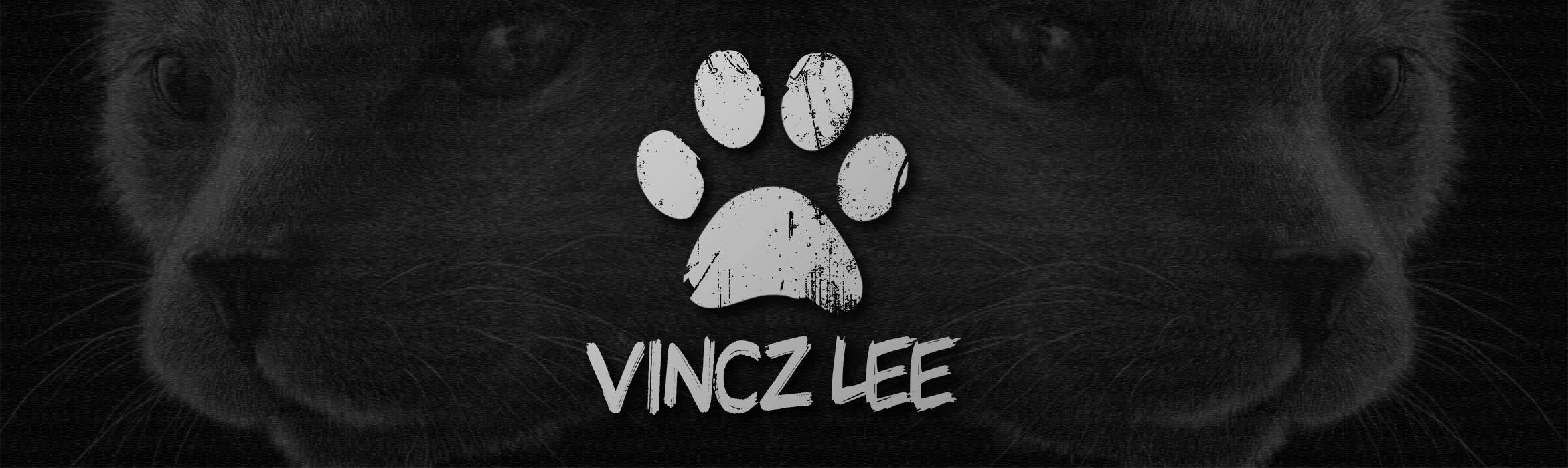 vincz-site-banner